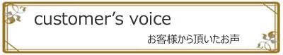 img-voice1
